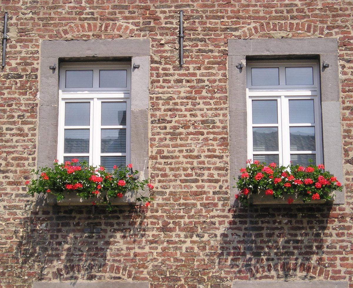 Zwei Fenster mit Blumenkästen